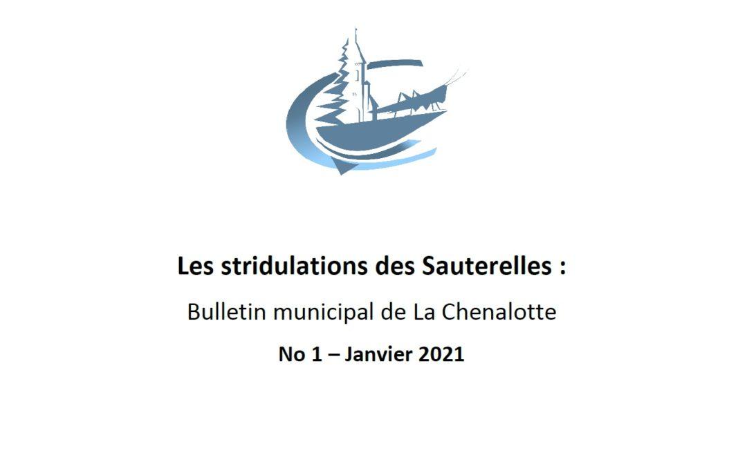 Le premier numéro du Bulletin municipal