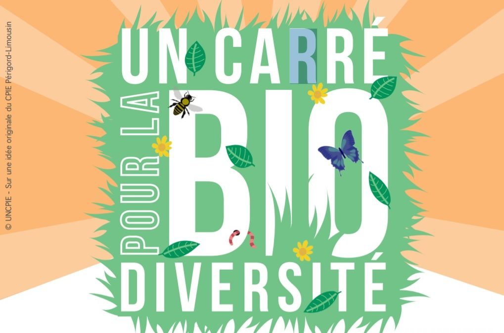 Un carré pour la biodiversité !