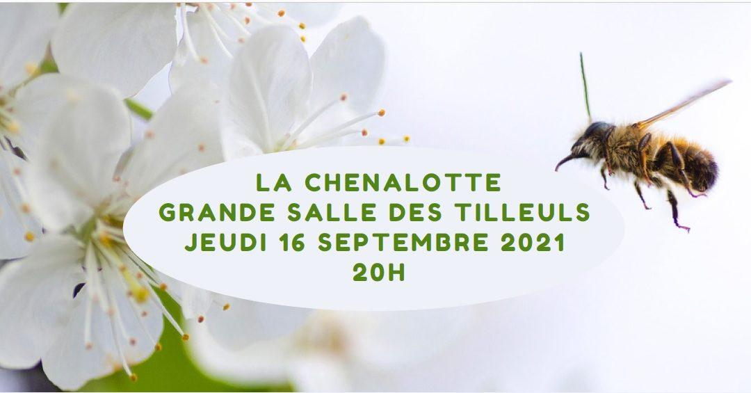Une conférence sur la disparition des insectes le 16 septembre